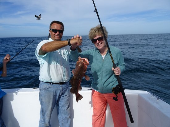 Hammerhead picture of macattack charters fort myers for Om fishing sinkers