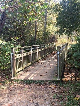 Roanoke, VA: photo3.jpg
