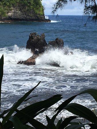 Papaikou, Hawaï : photo5.jpg
