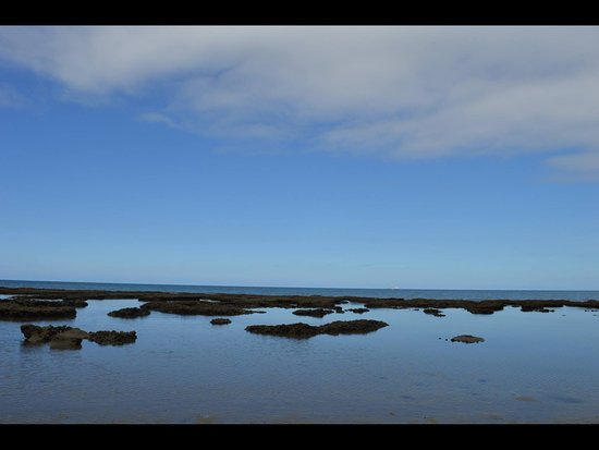 Мыс Трибулейшн, Австралия: Afternoon low tide makes great little rock pools to search