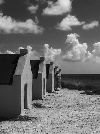 Kralendijk, Bonaire: photo1.jpg