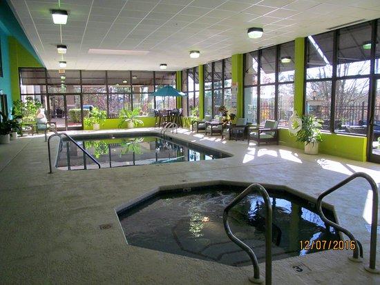 Hampton Inn Asheville - Tunnel Road: Pool and hot tub.