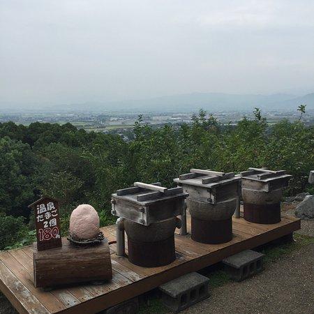 Kurume, Japan: みのう山荘 ひがえり温泉