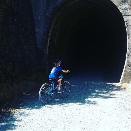 Bay of Islands, Selandia Baru: Old railway tunnel