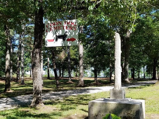 Tuscumbia, AL: Coon Dog Cemetery 2016