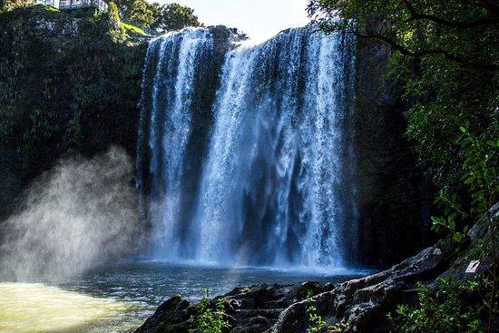 Whangarei, Nueva Zelanda: Rettu jose