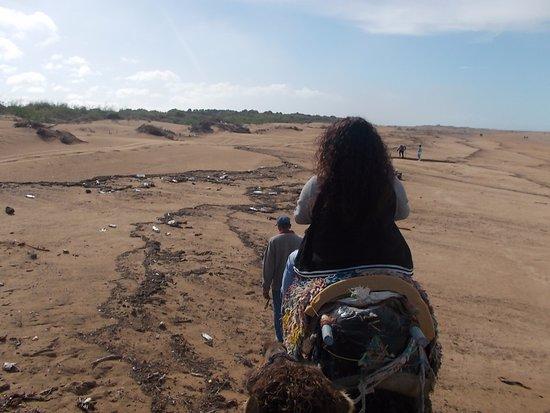 Essaouira Beach: Me riding on the camel
