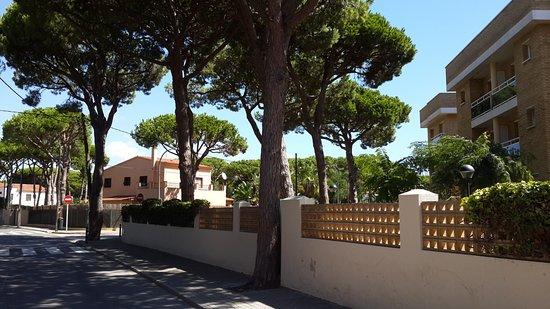 Solifemar Aparthotel: Городо Кастельдефельс утопает в зелени