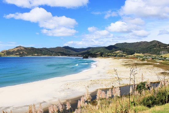 Great Barrier Island, New Zealand: Medlands Beach