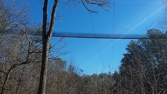 Whitesburg, GA: Swinging Bridge from below.