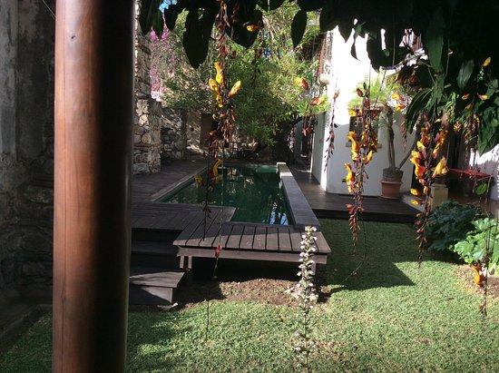 Hotel Cirilo: Garden and pool