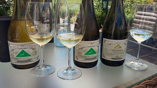 Франшхук, Южная Африка: The Altima Sauvignon Blanc tasting