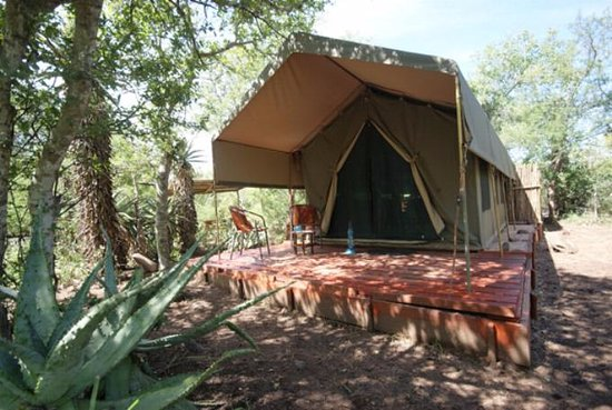 Calao Tented Camp: tente