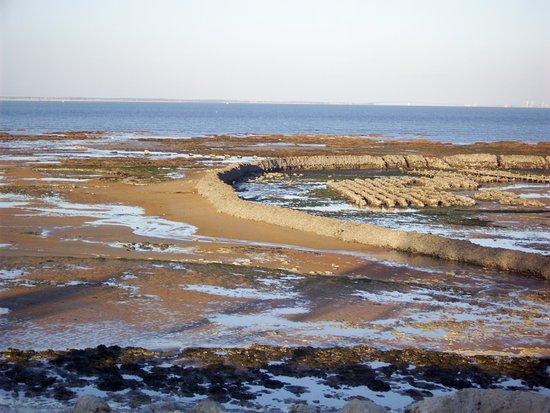La Bree-les-Bains, Francia: Écluse à poisson en marée basse