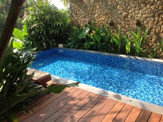 Ubud Green: Beautiful private plunge pool