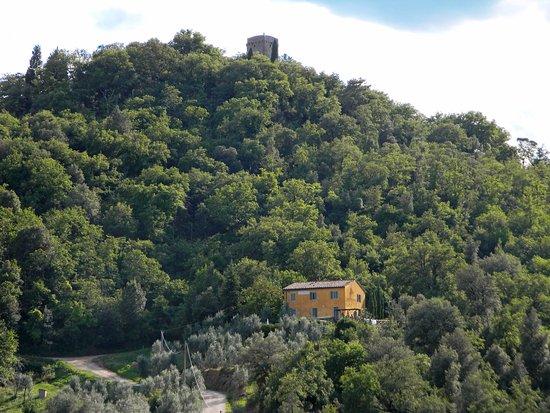 Mercatale Valdarno, Italia: House COSTA - Petrolo winery