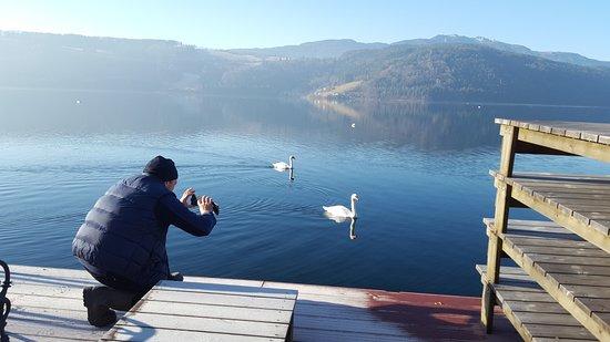 Millstatt, Austria: Рыбалка на озере