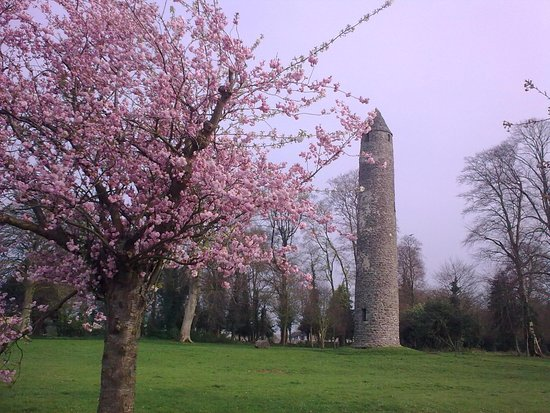 Antrim Round Tower with spring blossom