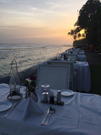 Ayurveda Paragon: zweimal pro Woche gibt es das Abendessen draußen - traumhaft!