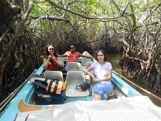 Катунайаке, Шри-Ланка: Eranga Kurera accompanied us for the additional tours we made. This is Madu River boat tour