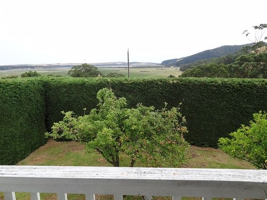 Hordern Vale, Australia: The garden and hedge are great.