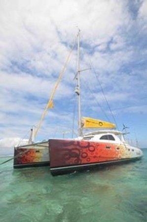 Trou aux Biches : Z'ile Cruise