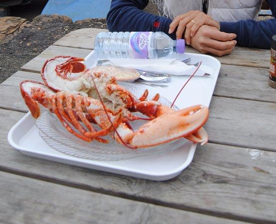 Crail, UK: Lobster