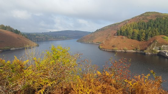 Llanidloes, UK: Autumn colours at Clywedog