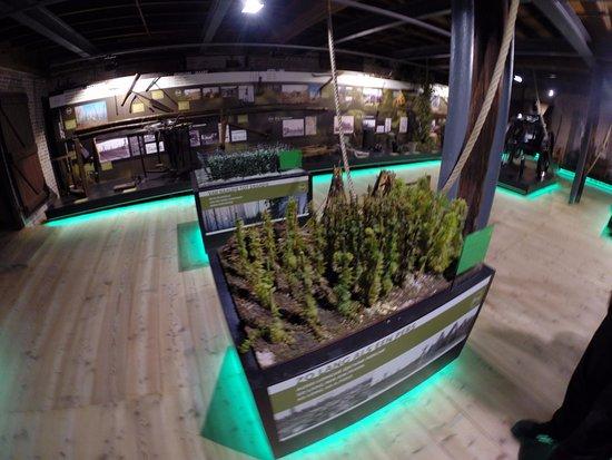 The Hop Museum : Modelo de plantação de lúpulo.