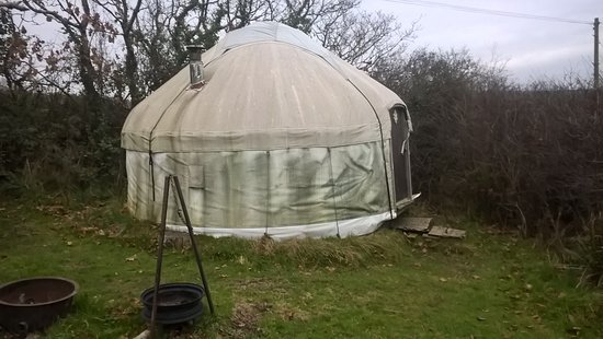 Wadebridge, UK: damp yurt
