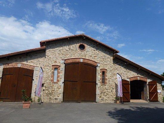 Vendee, Francia: Le Vignoble Epiard a fait une degustation au village du Vendée globe