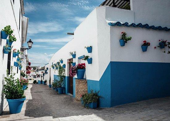 Billeder af canete de las torres udvalgte billeder af for Canete de las torres