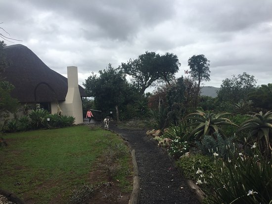 Olifantskop Lodge