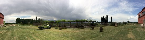 Vista Flores, Argentina: Panoramic view of our Bochas field before the storm comes.