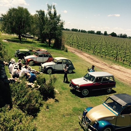 Vista Flores, Argentina: Classic cars and friends, we love the pairing!