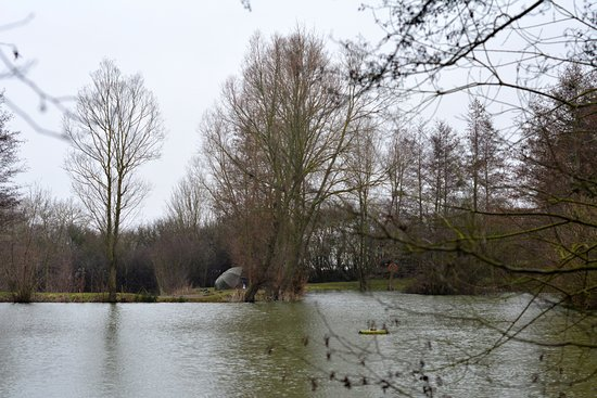 Foto de River