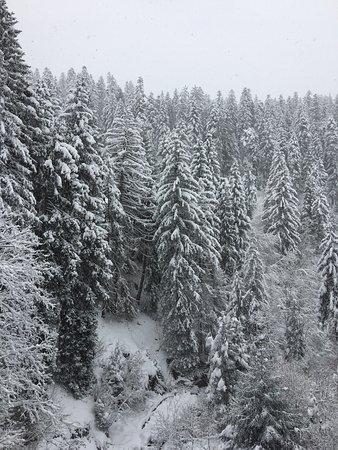 Laax, Switzerland: photo0.jpg