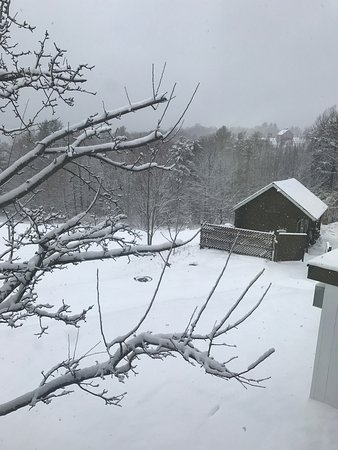 The Stowehof: photo1.jpg