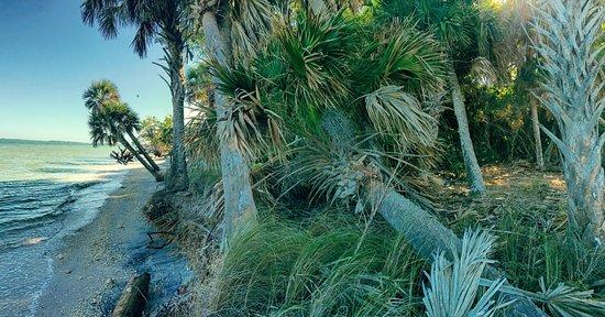 Boca Grande, FL: Quarantine beach