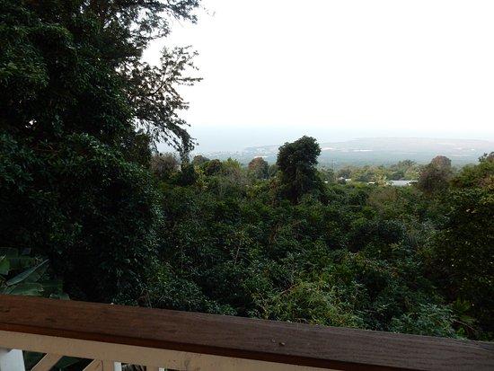 Lilikoi Inn: View from lanai.