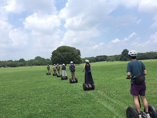 Segway Guided Tours in National Showa Memorial Park: 夏の原っぱ