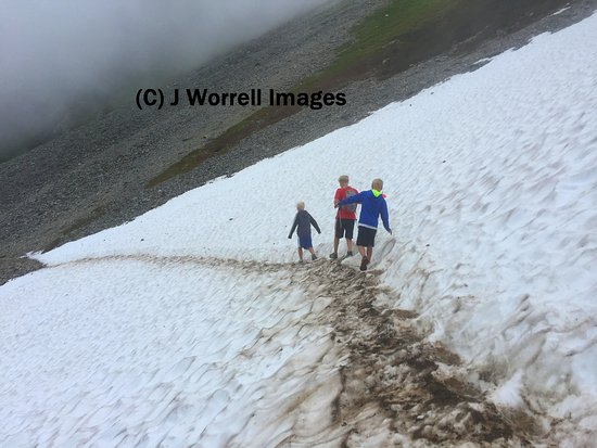 North Cascades National Park, Waszyngton: Snowfield along the trail.