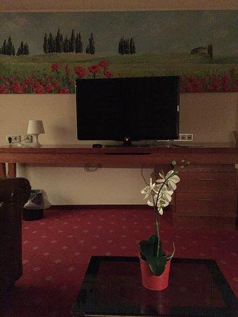 Hotel Villa Fuerstenberg Photo