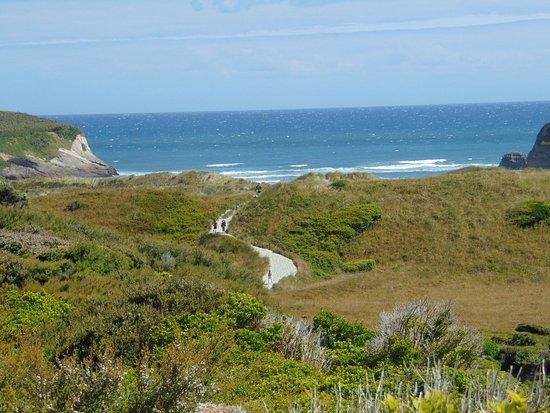 Golden Bay, New Zealand: Il sentiero verso la spiaggia