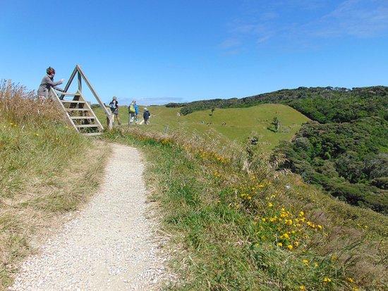 Golden Bay, New Zealand: Un pezzo del sentiero