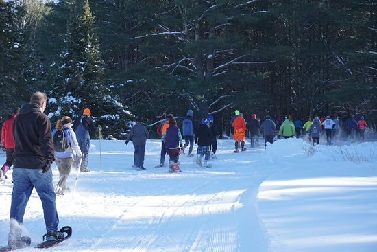 Rhinelander, Ουισκόνσιν: Snowshoers heading out on the wonderful trails.