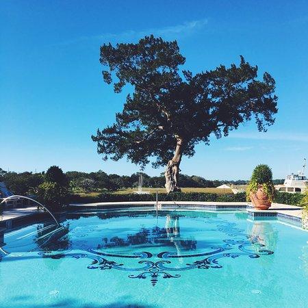 Sea Island, GA: The Cloister Pool - adults only.