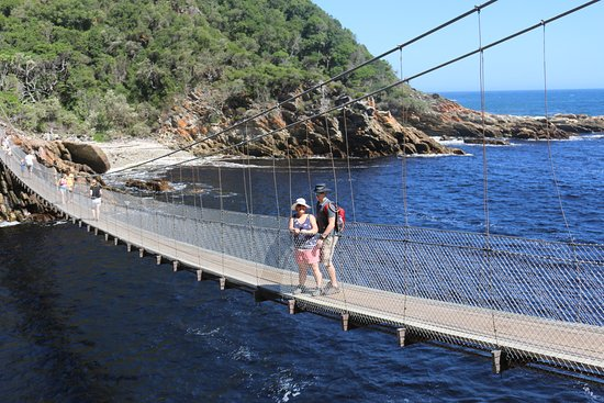 Tsitsikamma National Park, Sydafrika: One of 3 suspension bridges
