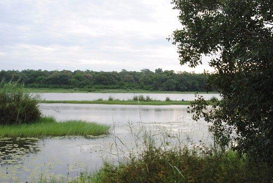 Caprivi Region Foto