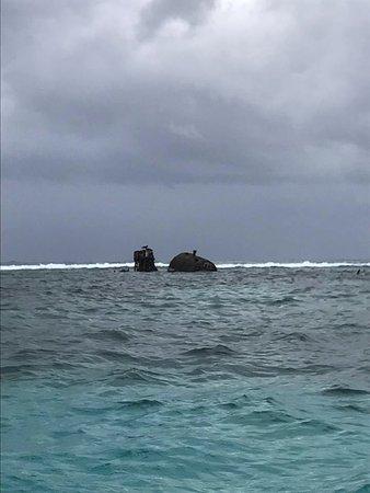 Coxen Hole, Honduras: Shipwreck snorkel spot AMAZING!